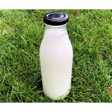 500ml Glass Milk Bottles with RTO cap x 24